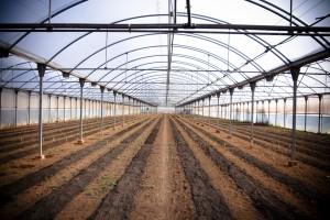 cursos-agriculutra-ecologica