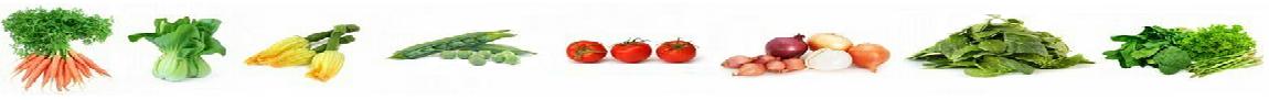 linea-hortalizas-ecologicas